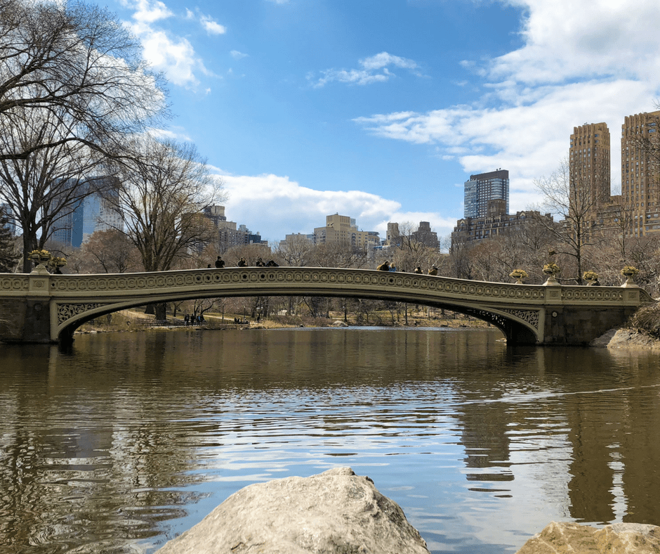 central-park-favorites